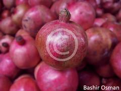 (Bashir Osman) Tags: pakistan fruit pomegranate fruta granada karachi grenade frutta rom sindh paquisto obst nar  bashir    vrugte  meyve  granatapfel melagrana  travelpakistan  pakistn              fructum  gettyimagespakistanq12012 bashirosman gettyimagesmiddleeast     aboutpakistan aboutkarachi travelkarachi   pakistna pakistanas  granaatjie