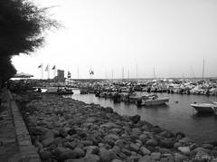IMG_2858 (fedelc93) Tags: porto azzurro isoladelba