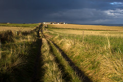 evening on the farm (Ray Byrne) Tags: evening path farm farmland northumberland northeast howick goldenlight stormlight raybyrne byrneoutcouk webnorthcouk