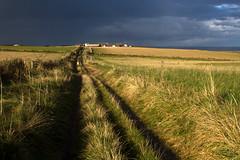 evening on the farm (Ray Byrne) Tags: evening path farm farmland northumberland northeast howick goldenlight stormlight raybyrne byrneoutcouk webnorthcouk