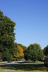 DSC02281 (tomcomjr) Tags: blue autumn trees red green fall yellow day sony sunny bluesky a33 kansas alpha slt pittsburg clearskies sonyalphadslr pittsburgks sal1855