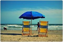 En octubre y en la playa (Viva La Marx) Tags: blue dog galveston beach gulfofmexico yellow walking island coast october midwest texas playa perro octubre isla 2012 tejas 35mmlens nikond3100