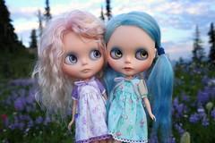 Friends enjoying the view (jessi.bryan) Tags: trip flowers sunset washington doll hiking mountrainier blythe wildflowers gbaby nachespeak customblythe mohairblythe laketipsoo wingsinflight gbabycustom
