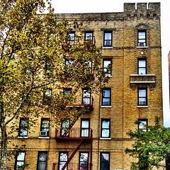 Williamsbridge Road Bronx (Nino.Modugno) Tags: city nyc newyorkcity windows urban building window buildings square bronx squareformat fireescape apartmentbuildings westchestersquare williamsbridge williamsbridgeroad aptbuildings iphoneography instagramapp uploaded:by=instagram ilovethebronx canyouspottheblackcatinthewindow