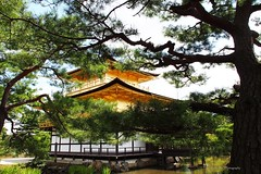 Kinkaku-ji, Kyoto, Japan (Luke,Ma) Tags: city panorama building japan architecture digital landscape ed temple four golden ancient kyoto view traditional olympus m architect micro   ez pavilion prefecture kansai  kinkakuji 43 omd thirds kinkaku   m43   greatphotographers mzd f4056 em5 kyotofu kyotoshi flickraward 918mm mzuiko m918 flickrtravelaward ezm918