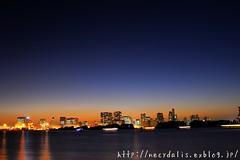 Tokyo Bay... (necydalis) Tags: sunset sea japan bulb night t japanese tokyo evening bay nikon purple shot side distagon carlzeiss 1435 d700
