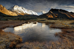 Frozen garden (Emmanuel Dautriche) Tags: morning autumn light mountain lake snow alps cold reflection ice grass nikon emmanuel vanoise d700 dautriche blinkagain bestofblinkwinners
