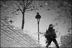 Reflet (Punkrocker*) Tags: street leica bw paris digital 50mm nb reflet konica m9 502 hexanon
