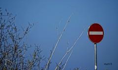 No restrizioni (Marci's) Tags: freedom nikon segnaletica divieto liberta libera segnaleticastradale d5100 restrizione