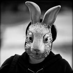 Take A Rabbit to the Cirkus (Thomas Hawk) Tags: bw usa rabbit bunny unitedstates mask florida miami unitedstatesofamerica fav10 miamidadecounty invisiblecirkus