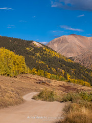 Autumn (Arina Habich) Tags: road blue trees sky white mountain plant color tree fall nature colors yellow america forest woodland landscape gold colorado offroad 4x4 grove september evergreen transportation trunk rockymountain dirtroad aspen deciduous curve populus cinnamonpass disambiguation