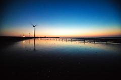 LOMO (Digital_trance) Tags: ocean sunset sea bird 20d nature windmill sunrise canon ship taiwan sigma crab  seafood oyster   lanscape bif              70d    40d      canon40d 5dmarkii 5d2 5dii canon5dmarkii eos5dmarkii canon5d2 canon5dmarkiii 5d3 canon70d 5diii