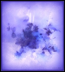 Floral spray - painting (edenseekr) Tags: abstract floral artwork purple digitallycreated corelpainter11