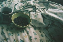 Sin Ttulo (window-blur) Tags: food film analog grey bed tea grain earl blueberries disposable