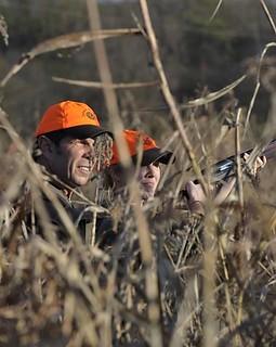 Alabama Luxury Quail Hunt - Guntersville 35