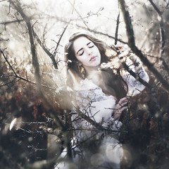 Ghost in the Forest (Rob Woodcox) Tags: white girl beauty fog forest sunrise focus soft dof dress bokeh branches magic surreal dew raindrops goldenhour shallowdepthoffield robwoodcox robwoodcoxphotography fabicantera