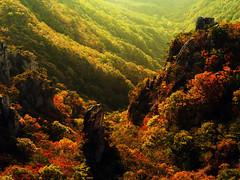 IMGP9740 (oasisframe) Tags: autumn mountain fall nature rock landscape maple korea autumncolors southkorea daedunsan   mtdaedun koreaimage