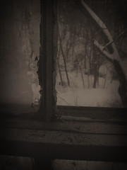 stay insde (lulu bubbles) Tags: old winter brown home broken window dark sill sephia