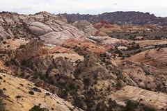 Colors Drift Through Sandstone (Jeff Mitton) Tags: landscape sandstone coloradoplateau redrockcountry wondersofnature earthnaturelife grandstaircaseoftheescalantenationalmonument