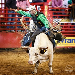The Bull Rider (Mario Houben | Photography) Tags: davieprorodeo rodeo actionphotography sportsphotography mariohoubenphotography prca professionalrodeo bullriding cowboy southflorida competition championship davierodeochampionship canoneos1dx risk action ef70200mmf28lisiiusm indoor