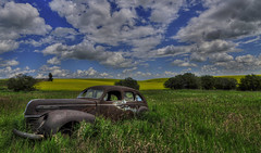 Old Merc Sedan (Len Langevin) Tags: abandoned old car vehicle rust rusty rustbucket mercury suicidedoors forgotten sky clouds alberta canada rural decay nikon d300s tokina 1116