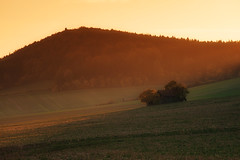 sunset (Rainer Schund) Tags: sunset sonnenuntergang nikon nikond700 natur nature natureexploring naturemasterclass abend stillleben mystisch