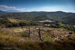 Landscape (Askjell's Photo) Tags: aegeansea greece hellas rhodes rhodos rodos