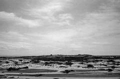 Low tide (marisjukss) Tags: tadoussac quebec river trip caffenol film bw olympus35sp