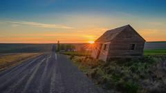 Long Way Home (Pedalhead'71) Tags: adamscounty ritzville washington unitedstates us abandoned barn gravel road sunset