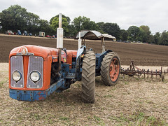 tractor2 (mikejsutton) Tags: berwick st john country fayre dorset mike sutton stars appeal steam engine traction wood sawing tractor pull tractors ford cortina mk3 vauxhall viva rio bumper reflection wheel tyre car landrover aec lorry truck deere ransomes ploughing sheep shearing threshing oil can hurdle fairground organ