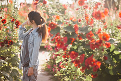 FLOWER (Chris Photography(王權)(FB:王權)) Tags: flower girl 學甲區 蜀葵花 台南 寫真 1dx 2470lii taiwan tainan