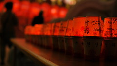 Not the Surface but the Words that matter (Sakib Mridha) Tags: colour colourrush cups light lights lantern lanternfest buddhisttemple busan words fire bokeh table people outdoor outside travel travelphotography southkorea