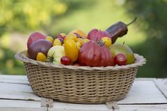 Das Beste aus meinem Garten (milance1965) Tags: tomaten gemse garten canon 600d tamron 90mm