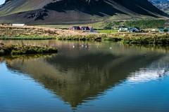 snfellsnes peninsula (mephistofales) Tags: snfellsnes iceland scandinavia lava volcanic reflection