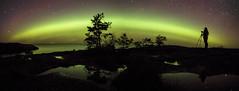 Aurora Photography (Muppian) Tags: auroraborealis aurora norrsken northernlights sky stars night photographer panorama water sea stersjn tree trees reflection