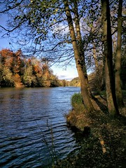 Autumn (Rob Hall -) Tags: autumn trees river thames color colors colour colours countryside country nature outdoors open crisp