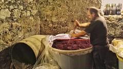 Fasi della vendemmia (fioravantegargiulo) Tags: vino mescola vinorosso wine uva cantina