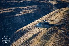 export_Axalp2012_1dx_2012-1588 (projectphoto.ch) Tags: schweiz demonstration cougar 2012 superpuma luftwaffe 332 axalp projectphoto schweizerarmee as aérospatiale fliegerschiessen stephanwinter projectphotoch