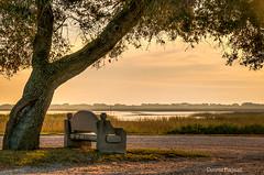 Sunrise at Morse Park Landing, Murrells Inlet (dbndixie) Tags: 6 photo sweet hdr onone cs6 lr4 morseparklanding