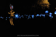 Night Fall - NightFall - Solstice Puppet & Lantern Bearers (Bill Morgan ) Tags: family music cold art fall fun dance costume puppet free production hartford firebreather nightfall elizabethpark annecubberly insanelycreative