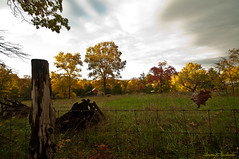 Evening Drive Around Home (sbuck1205) Tags: fallcolors shawneeforest