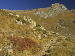 018 - time to climb (TFRARUG) Tags: mountain lake alps cross hike aosta ibex avic dondena