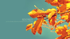 November 2012 (kriegs) Tags: desktop november wallpaper art fall leaves calendar widescreen digitalart desktopwallpaper 50mmf14 iphonewallpaper 2560x1440 androidwallpaper ipadwallpaper tabletwallpaper