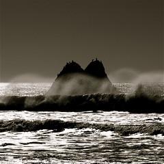 A Strange Land (blueteeth) Tags: ocean california birds coast rocks waves spray cayucos