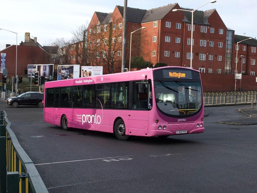 Mansfield Black Cat Bus