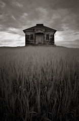 M o d e l (Rodney Harvey) Tags: blackandwhite abandoned grass rural decay northdakota infrared lonely schoolhouse bugseyeview