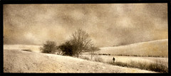 Paysage d'hiver 2 : Le solitaire (joel lintz) Tags: trees winter people panorama snow landscape pentax alt pano hiver arbres alsace neopan neige 135 paysage alternative alternatif solitaire basrhin altprocess espio brumath neopanss uniqueprint procdalternatif techniquealternative alternatifprocess joellintz tirageunique espio135m