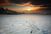 Elusive Tracks (Natasha Bridges) Tags: morning winter sky mist snow clouds sunrise countryside shropshire tracks fields wrekin