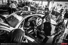 APR-Motorsport-Rolex-24-2013-012