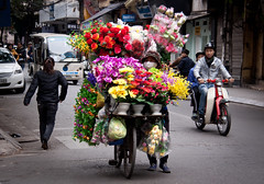 Flower Vender in the Old Quarter, Hanoi - Vietnam (ChrisGoldNY) Tags: street city travel flowers urban colors poster asian funny colorful asia southeastasia vietnamese colours forsale candid humor bikes streetscene vietnam bicycles viet viajes posters albumcover scooters lonelyplanet bookcover colourful hanoi sales selling motorbikes vending bookcovers nam albumcovers consumerist indochina vn gridskipper oldquarter venders northvietnam jaunted thechallengefactory chrisgoldny chrisgoldberg chrisgold chrisgoldphoto chrisgoldphotos